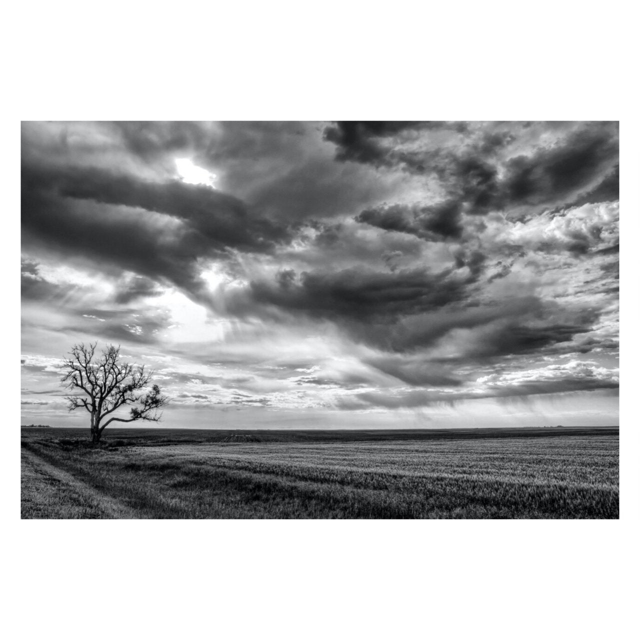 "Fine Art Prints - ""Somewhere In Kansas"" 