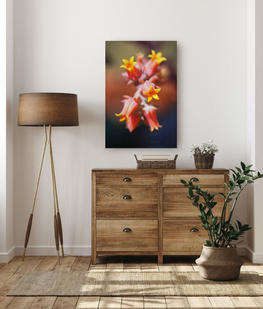 "Fine Art Prints - ""Succulent Bloom"" 