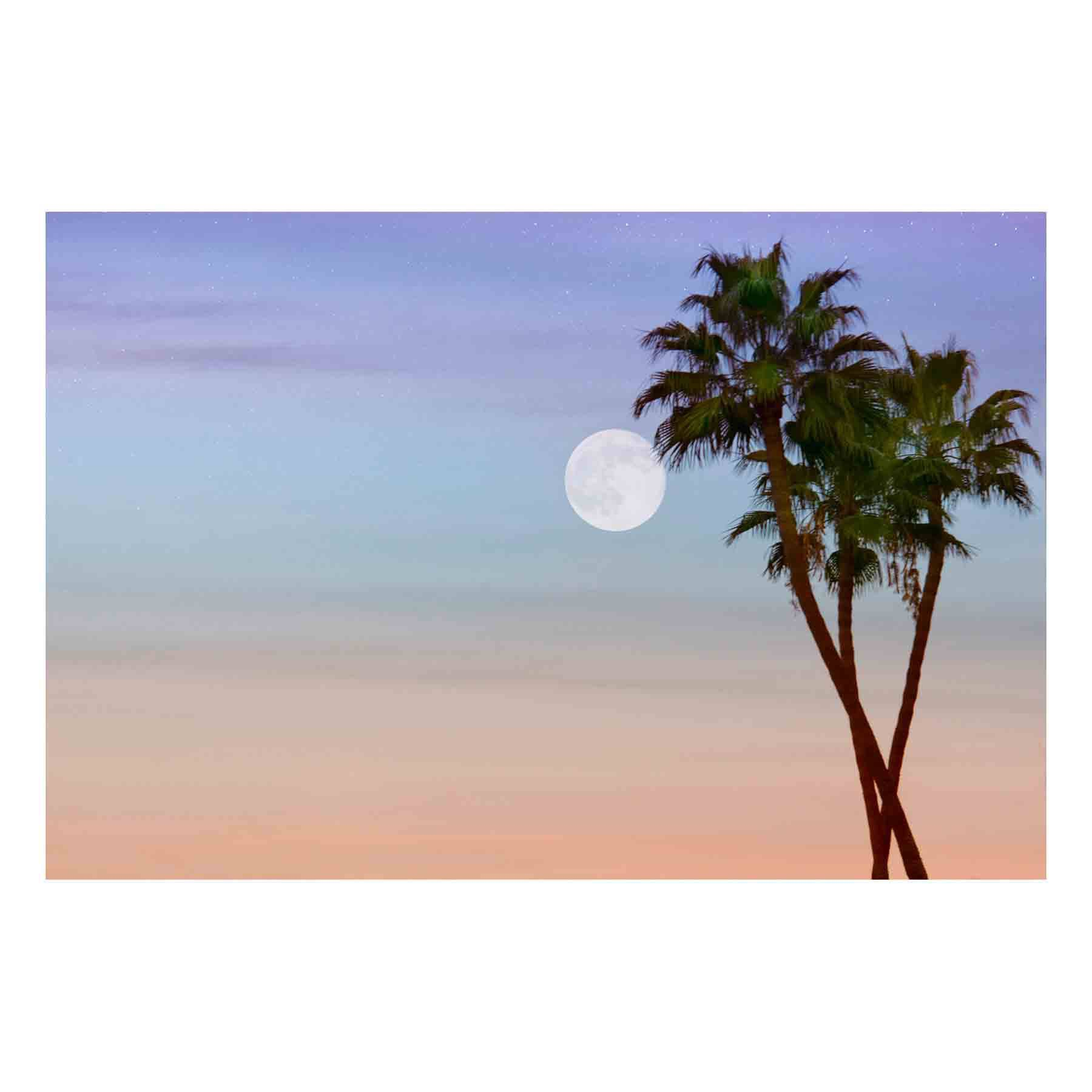 "Fine Art Prints - ""Wolf Moon"" 