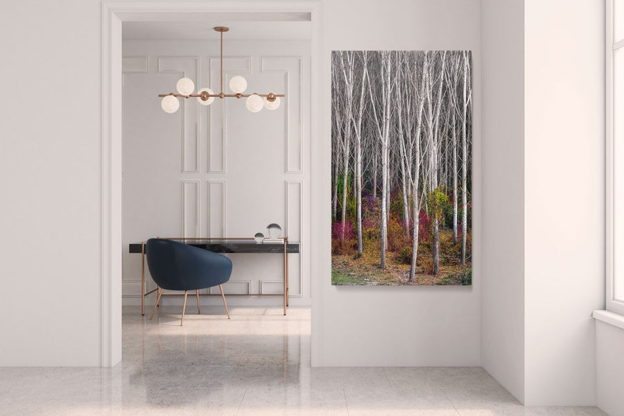 "Fine Art Prints - ""Woodland Realm"" 