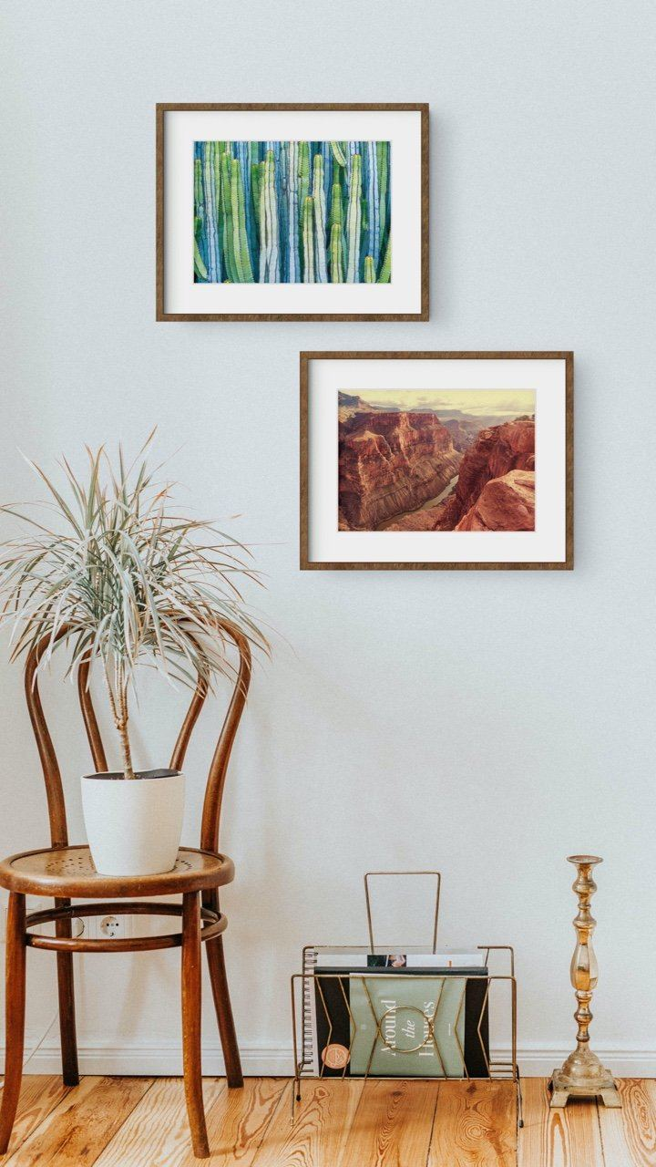 "Matted Prints - ""Land Before Time"" 