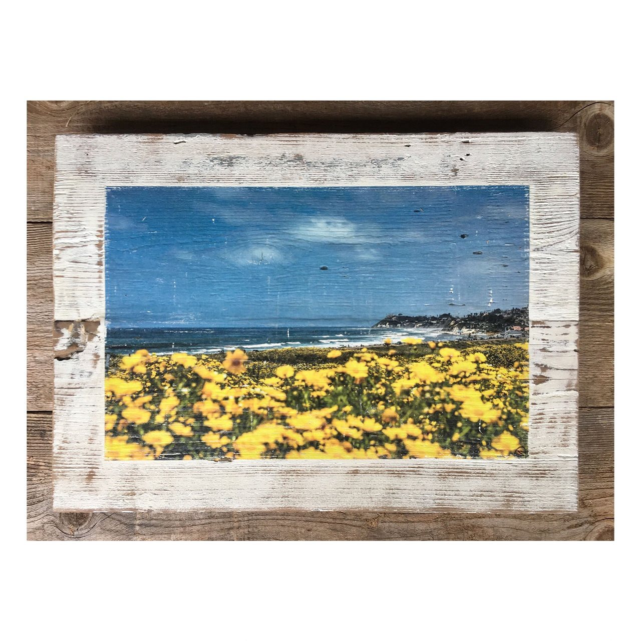 Wood Art Print - Cardiff By The Sea