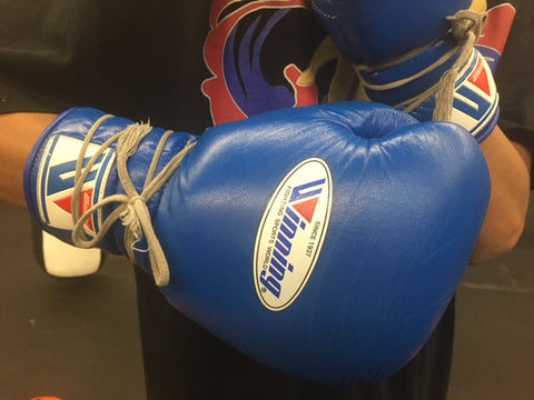 The 5 Best Boxing Gloves You Should Own  – Sweet Science Boxing