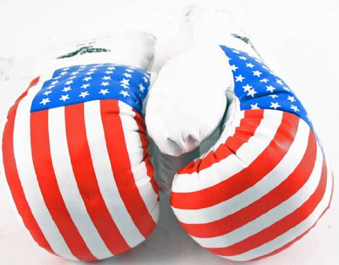 1 Pair USA 14oz Boxing Gloves New Punching Gloves