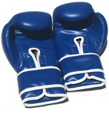 Sweet Science Boxing Gloves - Blue - Sweet Science Boxing - 2