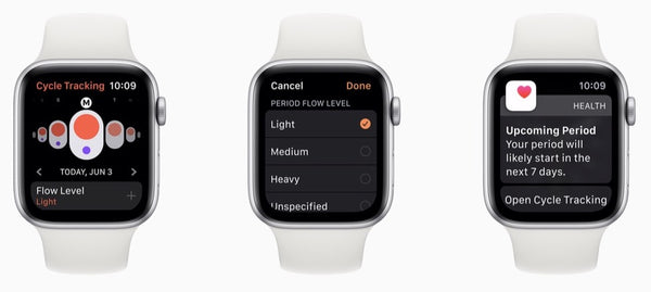 Health Metrics Apple Watch