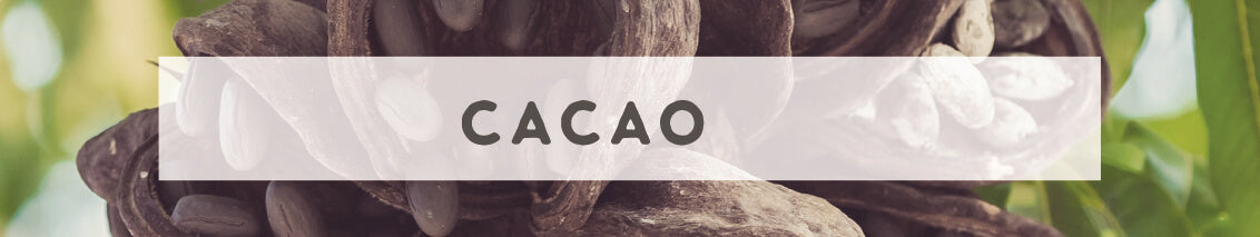 Cacao | Wildly Organic by Wilderness Family Naturals