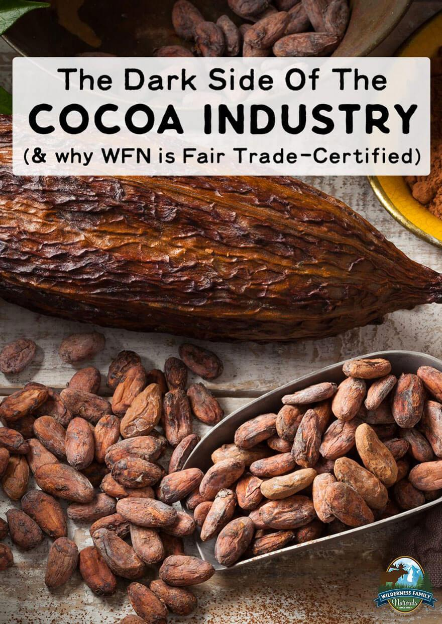 The Dark Side Of The Cocoa Industry (& why WFN is Fair Trade-Certified)