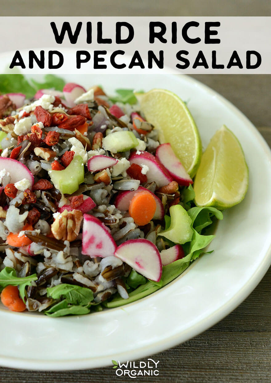 Wild Rice and Pecan Salad | This wild rice and pecan salad is a perfect side dish, but can also become a main by topping with protein such as roast beef or cooked chicken or turkey. While the wild rice does take a while to cook, the rest of the salad comes together very quickly. Bring this dish to a potluck or even make it ahead for easy weeknight dinners! This is gluten-free, vegetarian, real food.