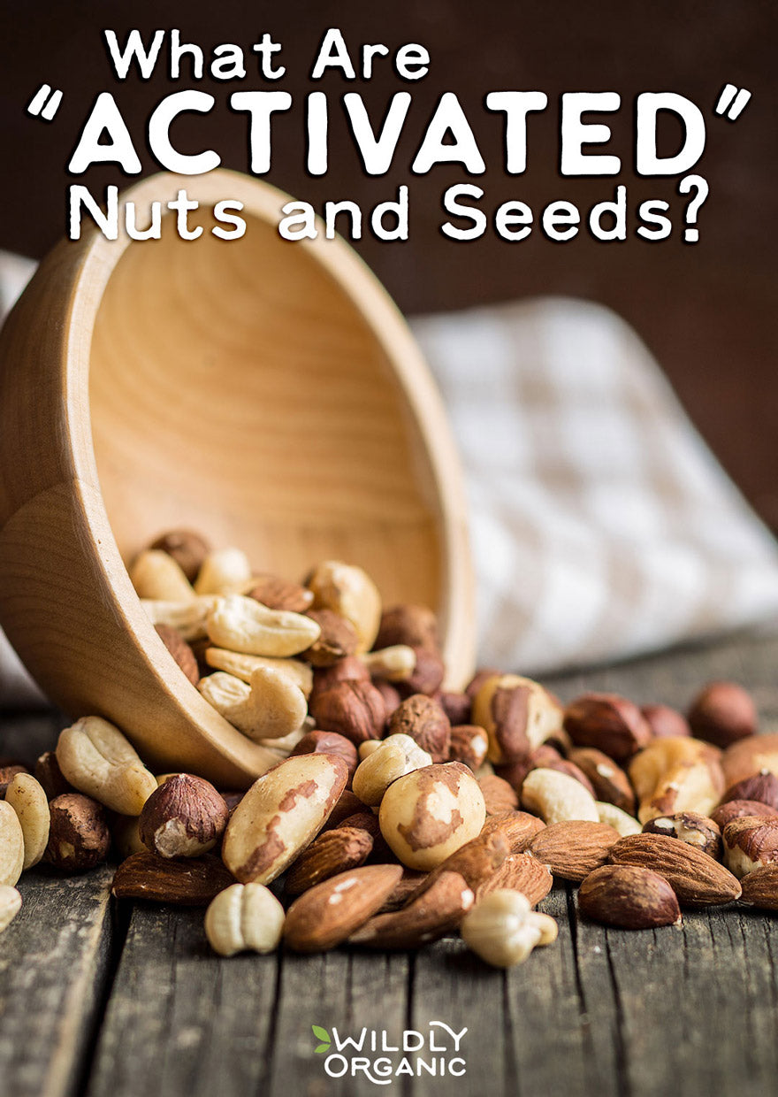 activated nuts and seeds