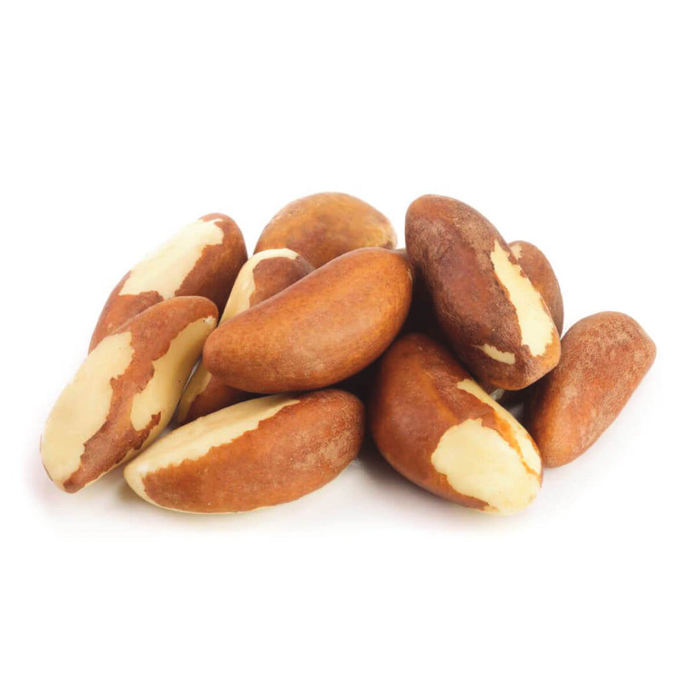 Nuts : Soaked and Dehydrated Nuts - Brazil Nuts | Organic | Raw