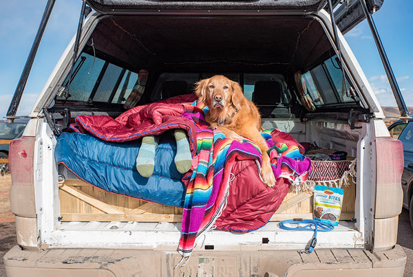 breeze turner marley truck camping atlas pet company