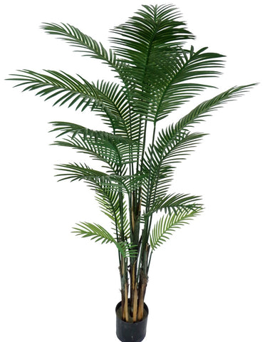 Artificial Robellni Phoenix UV Palm 152cm