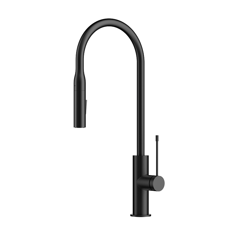 Aziz Black Pull Out Kitchen Mixer