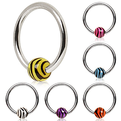 "316L Surgical Steel Captive Bead Ring with UV Zebra Ball - 16GA Purple L:3/8"" B:4mm - Sold as a Pair"