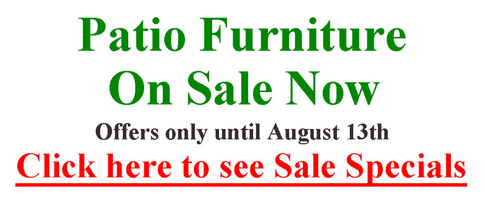 Special Offers until August 28th