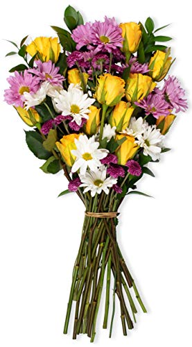 Benchmark Bouquets Life is Good Flowers Yellow, No Vase (Fresh Cut Flowers)