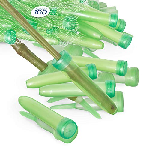 "Floral Water Tubes/Vials for Flower Arrangements by Royal Imports, Green - 3"" (1/2"" Opening) - Standard - 100/Pack - w/Caps"