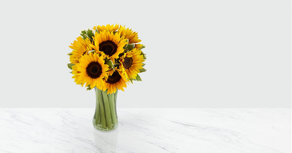 Endless Summer Sunflower Bouquet - 9 Stems with Vase