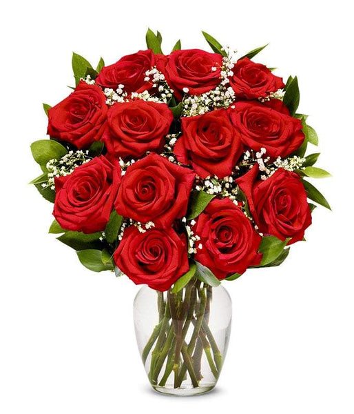 One Dozen Long Stemmed Red Roses (Free Vase Included)