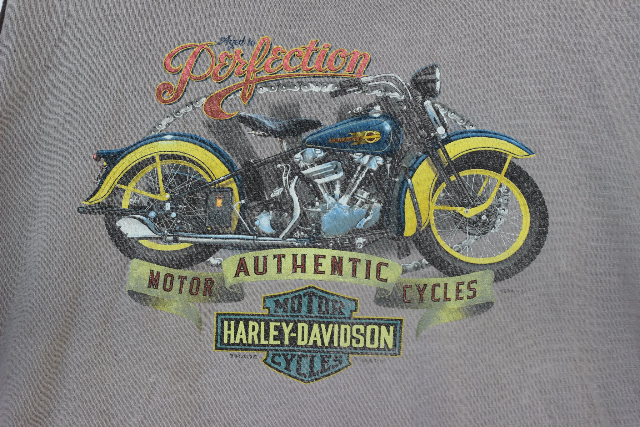 2007 Smoky Mountain Harley Davidson Muscle T-Shirt (XL)