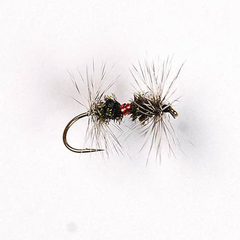 Royal Renegade dry fly