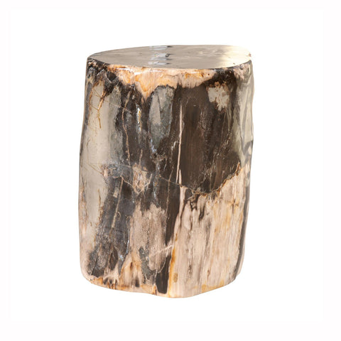 Black Petrified Wood Stool
