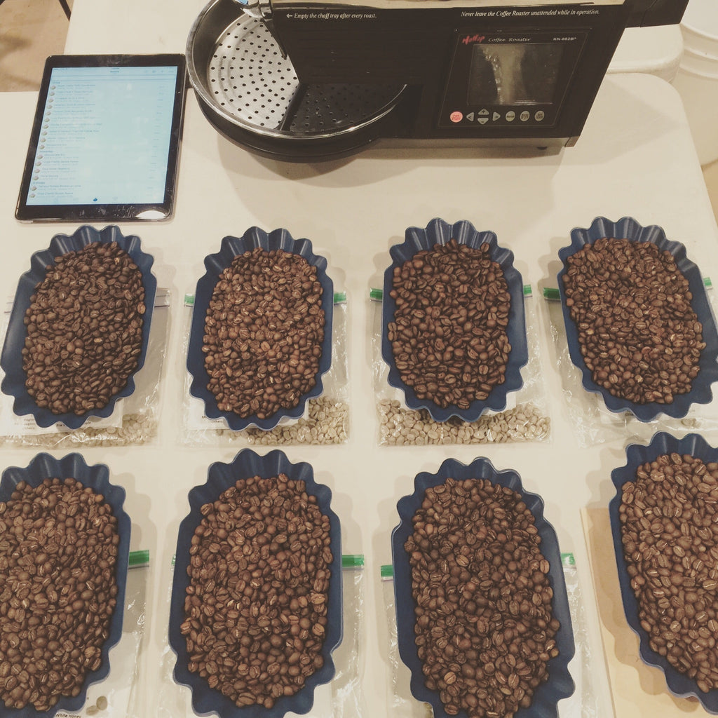 Cupping - Exclusive Coffees Costa Rica