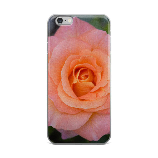 PINK GARDEN ROSE iphone 6/6s Plus case