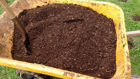 custom mixed soil for growing hot peppers and tomatoes