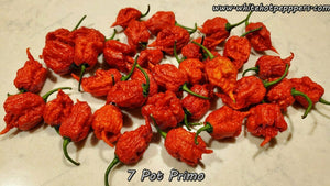 7 Pot Primo - Pepper Seeds - White Hot Peppers
