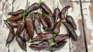 Bih Jolokia Black - Pepper Seeds - White Hot Peppers