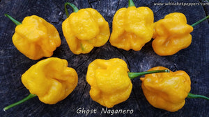 Ghost Naganero - Pepper Seeds - White Hot Peppers