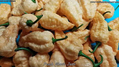 Peach Ghost Jami - Pepper Seeds - White Hot Peppers