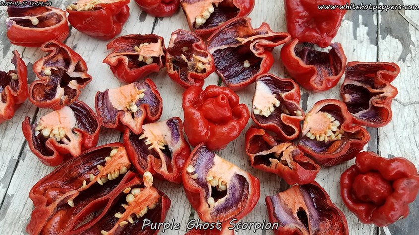 Purple Ghost Scorpion - Pepper Seeds - White Hot Peppers