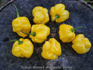 Scotch Bonnet Marabella Market Yellow - Pepper Seeds - White Hot Peppers