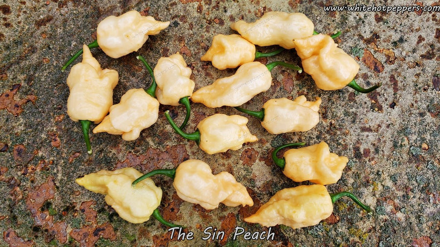 The Sin Peach - Pepper Seeds - White Hot Peppers