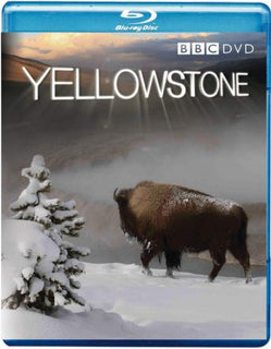 Yellowstone [Blu-ray]