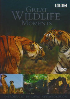 Great Wildlife Moments Introduced by David Attenborough [DVD]