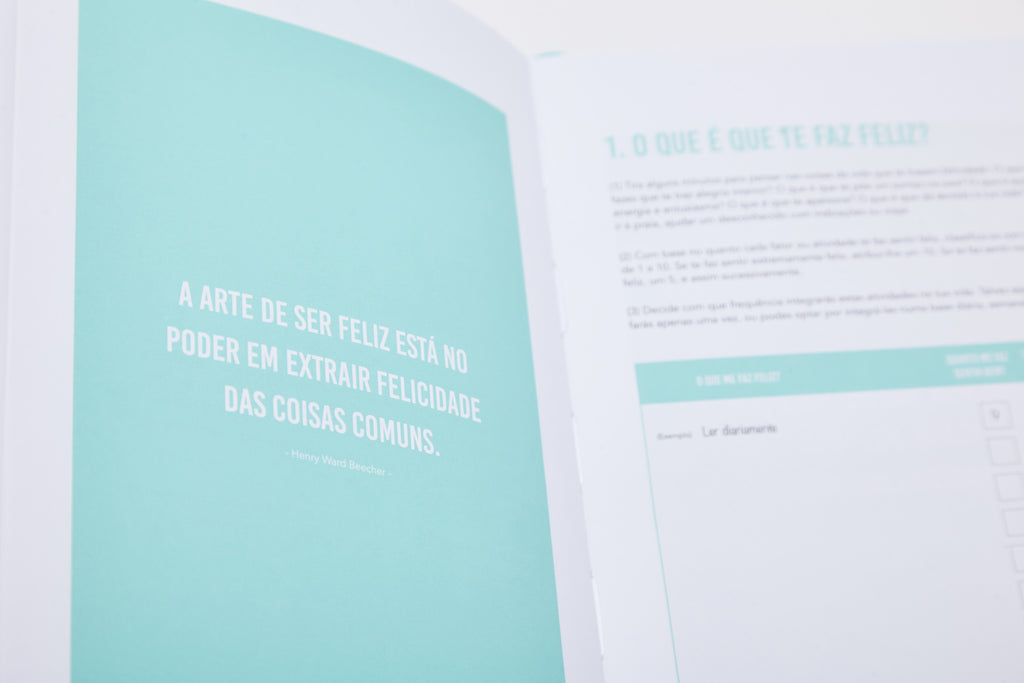 The 100-Day Planner (Português)