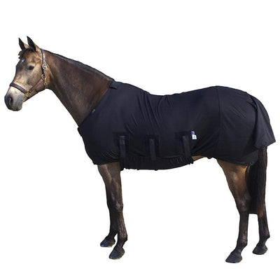 Underwear For Horses: The Best Rugs To Stop Rubbing