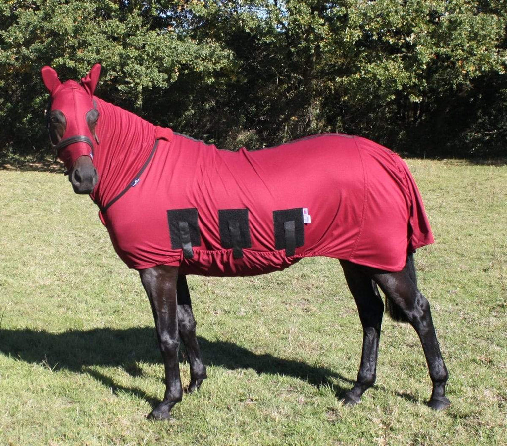 Snuggy Hoods Launch a NEW COLOUR - Burgundy
