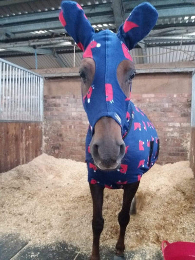 Snuggy Hoods Sponsored Rider - Natalie Povey's Latest Blog