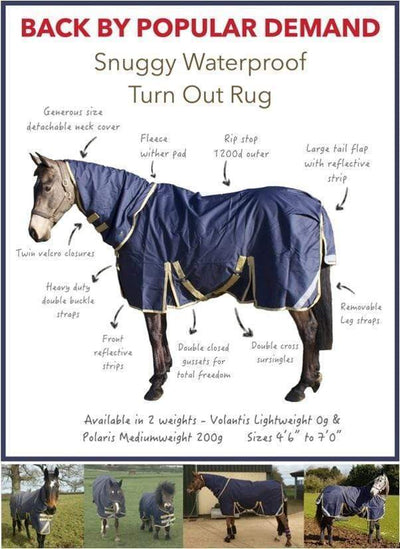 Back by Popular Demand - Turn Out Rugs