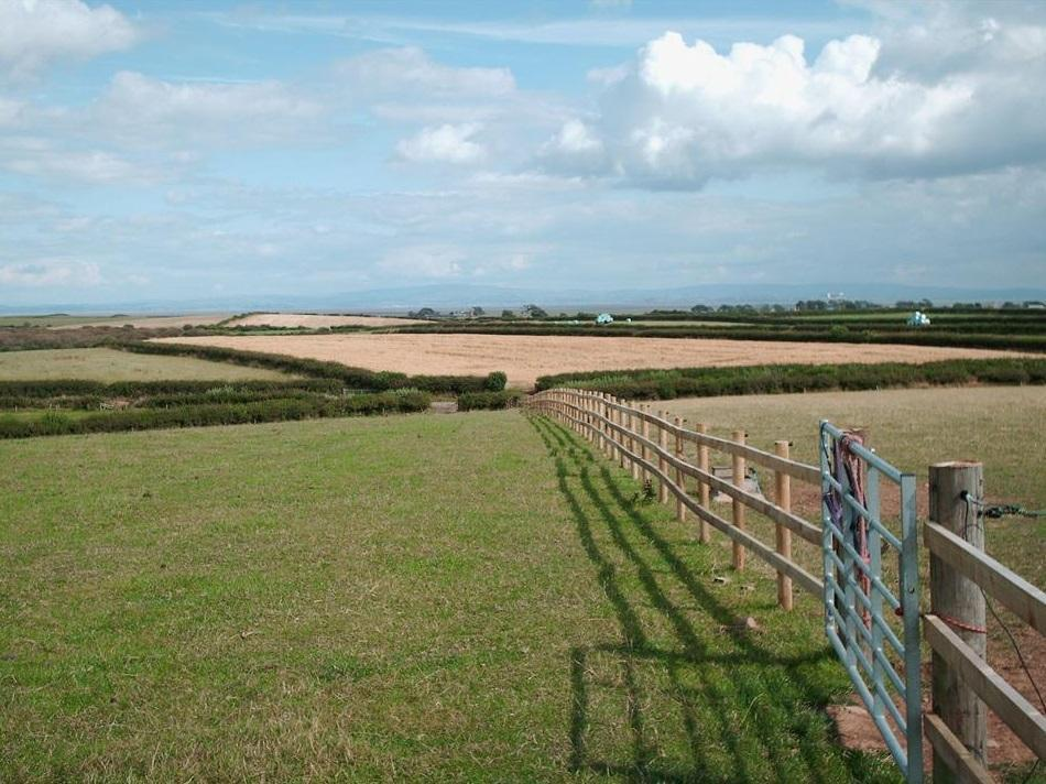 Fencing Your Horse Paddock