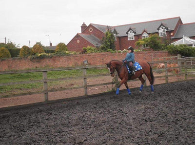 Latest Blog from Para Dressage Rider Natalie Povey