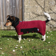outdoor dog coat with belly burgundy jack Russell coat