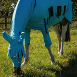 Anti-Itch Front Leg Covers for Horse - Sweet Itch & Sarcoid Protection - Snuggy Hoods