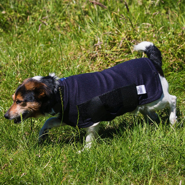 Outdoor Dog Rug - Keeps dogs clean and dry with complete tummy coverage by Snuggy Hoods