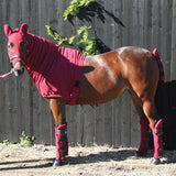 Jams Fleece Horse Hood - Additional Stable Warmth for Horse & Pony - Snuggy Hoods